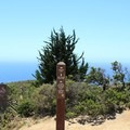 The cutoff from Old San Pedro Road to Gray Whale Cove Trail is very steep, and bikes are prohibited.- Montara Mountain