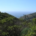 San Pedro Mountain and the Pacific seen from McNee Ranch.- Montara Mountain