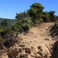 Montara Mountain Trail becomes rocky and steep toward the summit.- Montara Mountain Trail