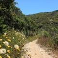 Montrara Mountain Trail.- San Pedro Valley County Park