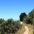 Montara Mountain Trail in San Pedro Valley County Park.- San Pedro Valley County Park