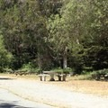 San Pedro Valley County Park picnic area.- San Pedro Valley County Park