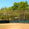 The baseball diamond in McKinley Park.- McKinley Park