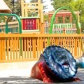 The playground in McKinley Park. - McKinley Park