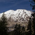 Mount St. Helens (8,365') from the Ape Canyon Trail.- Ape Canyon