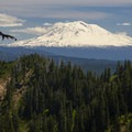 A view of Mount Adams (12,281') from Ape Canyon.- Ape Canyon