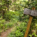 The junction with the Herman Creek Trail.- Chinidere Mountain + Wahtum Lake Hike