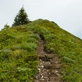 The trail follows a ridge to the summit of Chinidere Mountain.- Chinidere Mountain + Wahtum Lake Hike