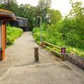 Mercer Slough Nature Park Environmental Learning Center.- Mercer Slough Nature Park
