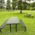 Tolt-MacDonald Park.- Tolt-MacDonald Park