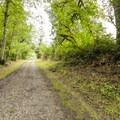 Access trail and road to the Tolt-MacDonald Park north picnic shelter.- Tolt-MacDonald Park
