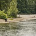 Snoqualmie River beach at Tolt-MacDonald Park.- Tolt-MacDonald Park