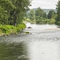 Snoqualmie River at Tolt-MacDonald Park.- Tolt-MacDonald Park