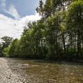 Tolt River at Tolt-MacDonald Park.- Tolt-MacDonald Park