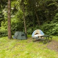 John MacDonald Memorial Campground south-end walk-in campsite.- John MacDonald Memorial Campground
