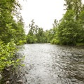 Green River at Flaming Geyser State Park.- Flaming Geyser State Park
