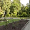 Priest Point Park Rose Garden.- Priest Point Park