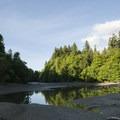 Ellis Creek at Priest Point Park.- Priest Point Park