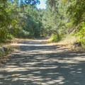 The loop begins as an easy, shaded walk.- Merry-Go-Round and Ridge Trail Loop