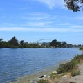 Looking north from Berkeley Aquatic Park.- Aquatic Park