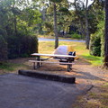 A typical site in Bullards Beach State Park Campground.- Bullards Beach State Park Campground