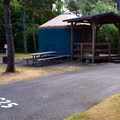 A typical yurt site in Bullards Beach State Park Campground.- Bullards Beach State Park Campground