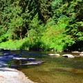 Drift Creek.- Harris Ranch Trail