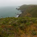 A view from the Coastal Trail between Rodeo Beach and Muir Beach.- Coastal Trail, Rodeo Beach to Muir Beach