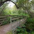 A bridge at Tennessee Valley.- Coastal Trail, Rodeo Beach to Muir Beach