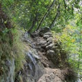 Lake Anza Trail is very rocky and eroded in spots.- Lake Anza Trail