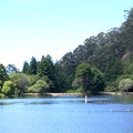 Swimming is permitted in designated area only.- Lake Anza