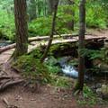 Crossing Talapus Creek.- Talapus Lake