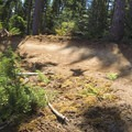 There are many tight, steeply banked turns on Highballer.- Alsea Flow Trails