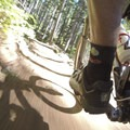 Alsea Flow Trails.- Alsea Flow Trails