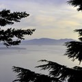 San Juan Islands through the trees.- Oyster Dome