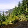 Viewpoint at 1 mile.- Oyster Dome