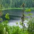 The trail gains elevation for a beautiful view of Olallie Lake from above.- Olallie Lake