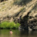 A swimmer does a backflip off of the cliff jumping spot at the swimming hole.- Ritter Road Swimming Hole