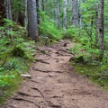 Wide, well-maintained trails to Talapus and Olallie lakes.- Olallie Lake