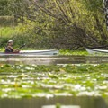 Kayakers at Washington Park Arboretum.- Washington Park Arboretum Kayak/Canoe