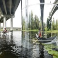 Paddling under WA Hwy 520.- Washington Park Arboretum Kayak/Canoe
