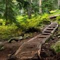 Mount Pilchuck Trail.- Mount Pilchuck