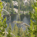 Island in Dutch Flat Lake.- Elkhorn Crest Trail: Lost Lake + Summit Lake