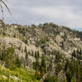 The Elkhorn Crest Trail as it heads toward Nip and Tuck Pass.- Elkhorn Crest Trail: Lost Lake + Summit Lake