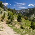 The trail looks more like a road after the Cracker Saddle junction.- Elkhorn Crest Trail: Lost Lake + Summit Lake