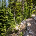 Trail to Summit Lake.- Elkhorn Crest Trail: Lost Lake + Summit Lake