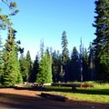 Typical campsite.- Huckleberry Mountain Campground