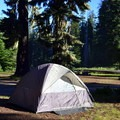 Typical campsite in Huckleberry Campground.- Huckleberry Mountain Campground