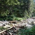 A stream crossing on the Denny Creek Trail.- Snowshoe + Keekwulee Falls via Denny Creek Trail
