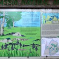 The story of the Camassia Natural Area and The Nature Conservancy's involvement.- Camassia Natural Area